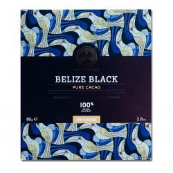 Chocolate Tree - Belize...