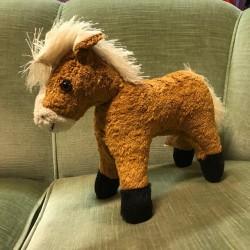 Kallisto Häst Leyla